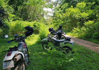 More Trails 2017